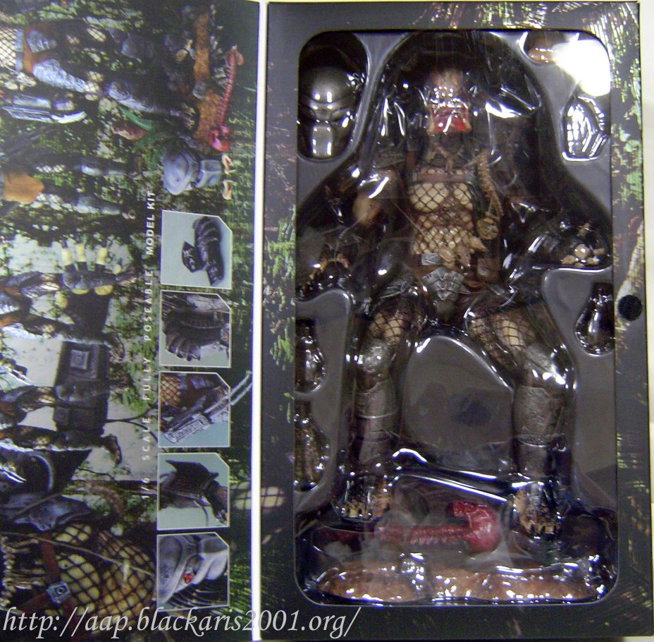 Predator Sideshow Exclusive